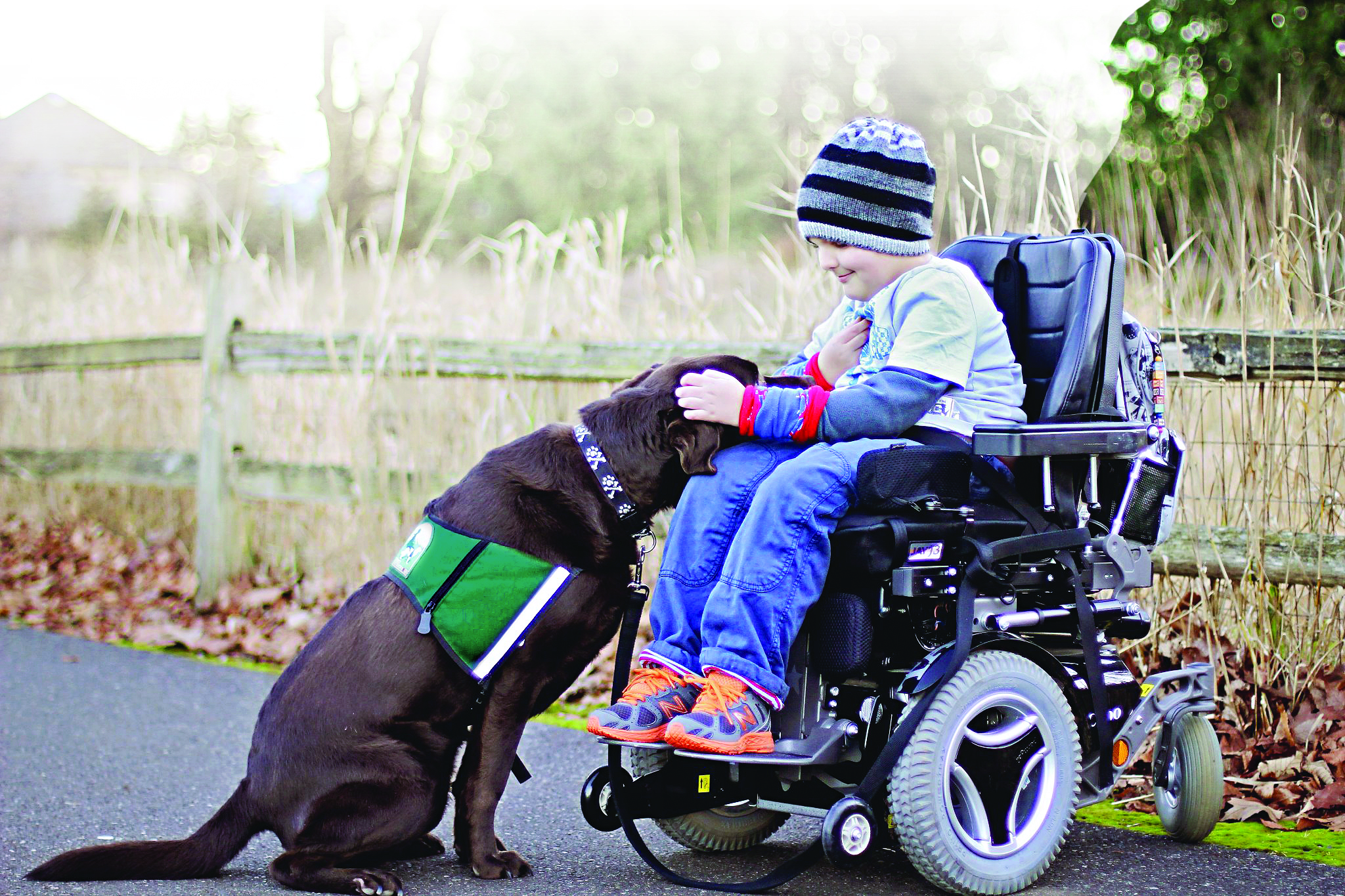 Service Dog: Taysen and Jackson