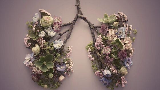Flower Lungs